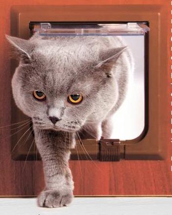 Дверца в туалет для котов